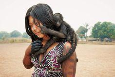 Singe de compagnieUne jeune Kayapo se promène dans Kendjam, un village du nord du Brésil, avec un singe-araignée sur l'épaule. Les Kayapo élèvent parfois des bébés singes et les petits d'autres animaux qu'ils chassent.