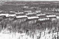 Kościelny z Gogolina.Sytuacja była groźna, oficerowie NKWD nie rozstawali się z odbezpieczonymi pistoletami. Niemcy, ratując swoją skórę denuncjowali ...