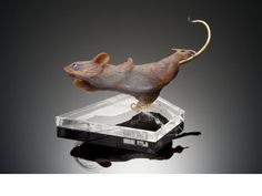 Bonhams Agate Carving, Skating Mouse