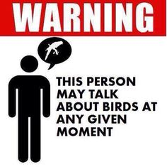 Warning: this person may talk about birds...