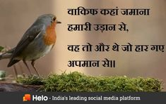 Helo App, Hindi Quotes, Social Media, Social Networks, Social Media Tips