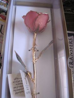 Forever rose. A rose dipped in gold. Reminds me of the enchanted rose in beauty and the beast. I'm so in love with this and it's so romantic
