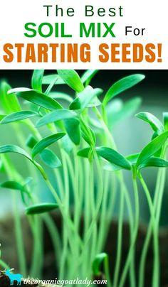 Garden Soil, The Best Soil Mix For Starting Seeds, Seed Starting Soil, Organic Seed Starting Mix, Gardening Tips, Gardening DIY