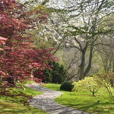 Oázy zeleně uprostřed měst, ale také místo uchování cenných genofondů rostlin, to jsou botanické zahrady. Pojďme se dozvědět více v Nové Botanice. Oahu, Sidewalk, Country Roads, Side Walkway, Walkway, Walkways, Pavement
