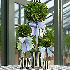 Topiary 45 Gorgeous Tropiary Trees Ideas For Outdoor And Indoor Garden Topiary Garden, Topiary Trees, Topiary Decor, Mackenzie Childs Inspired, Mckenzie And Childs, Flower Pots, Painted Furniture, Floral Arrangements, Diy Home Decor