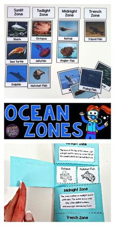 2742 best Creative Science Ideas for Kids images on Pinterest in ...