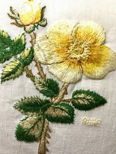 Embroidery Monogram, Rose Embroidery, Embroidery Thread, Embroidery Patterns, Embroidered Roses, Thread Painting, Brazilian Embroidery, Textile Art, Cute Art