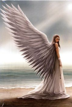 pictures from Anne Stokes | Home :: Anne Stokes Cards & Journals :: Spirit Guide Anne Stokes Angel ...