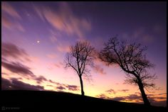 Skywatcher Jeff Berkes took this image of Jupiter, Venus, and the moon with a dramatic skyscape and foreground trees in West Chester, PA, Feb. 26, 2012.