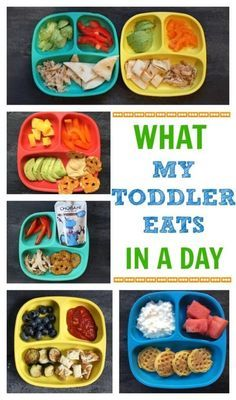 If you've had the luxury of making meals for a toddler you'll quickly appreciate the one constant that comes from creating a toddler feeding routine. Here's a look at what my toddler eats in a day- from breakfast to dinner and snacks included! /MomNutrition/