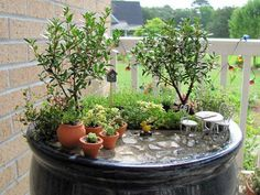 Amazing Miniature Gardens | Just Imagine - Daily Dose of Creativity