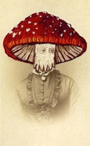I wasn't sure where to put this - fungi? embroidery?  I went with Creepy Cool instead... Embroidered vintage photo by J Chase.