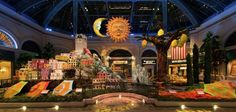 Enjoy our seasonal showcase of the most beautiful floral artwork custom-designed by Bellagio's incredible Conservatory team of horticulturalists and artists.
