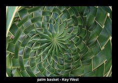 palm basket center