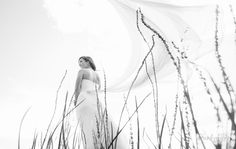 Filberg Lodge and Park WEdding Courtenay British Columbia weddings photos photography