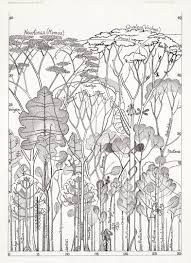 francis halle trees - Google Search