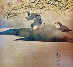 Plovers. Sakai Hoitsu. 静嘉堂文庫美術館. Seikado Bunko Museum. Japan