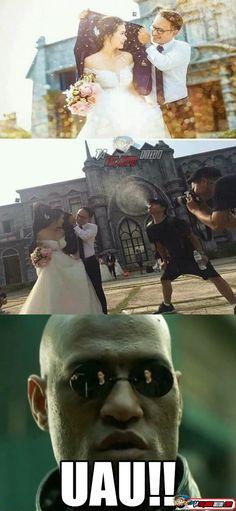 Uma verdadeira foto de casamento Lol Memes, Funny Memes, Memes Humor, Funny Cute, Haha Funny, Hilarious, America Memes, Family Humor, Cute Photos