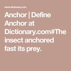 Anchor | Define Anchor at Dictionary.com#The insect anchored fast its prey.