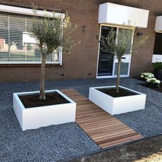 Small Front Gardens, Back Garden Design, Outside Decorations, Backyard, Patio, Outdoor Furniture Sets, Outdoor Decor, Front Yard Landscaping, Home And Garden