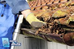 Nice-N-White is a #propertymaintenance company who provides the service of #Guttercleaning in #Nottingham Follow @nicenwhite