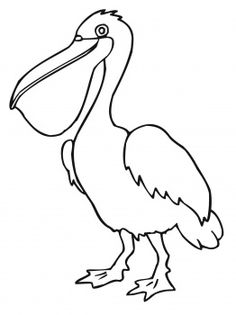 Pelican Bird Coloring Page From Pelicans Category Select 24848 Printable Crafts Of Cartoons Nature Animals Bible And Many More