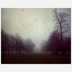 Shadows And Fog Canvas Wrap, Irene Suchocki