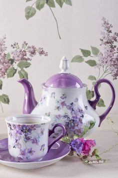 Anka Ilic ( You are able to enjoy break fast or various time times using tea cups. Tea cups also provide ornamental features. Whenever you look at the tea glass designs, you will dsicover this clearly.