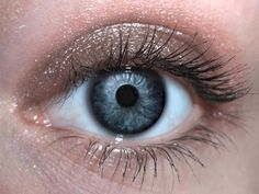 Sand Eyeshadow. The perfect shade for Summer and a must for any fashionista.