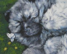 Keeshond Painting - Keeshond Pup With Butterfly by Lee Ann Shepard