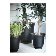 "HASSELNÖT Plant pot - 9 ½  - IKEA Outside diameter: 11 ¾ "" Max. diameter inner pot: 8 ¼ "" Height: 11 ½ "" Inside diameter: 11 ¾ """