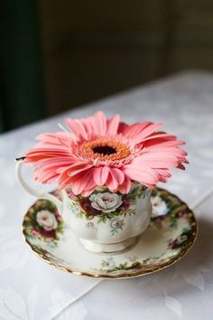 "♫  ""I love flowers filling a tea cup!"" ♫   .. X ღɱɧღ 