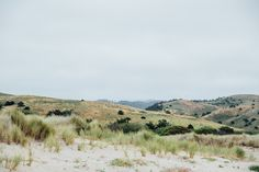 Dunes and fog goodness on Limantour Beach. Favorite destination on my California Road trip: Tomales Bay | Emilie Waugh Photography