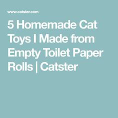 5 Homemade Cat Toys I Made from Empty Toilet Paper Rolls | Catster