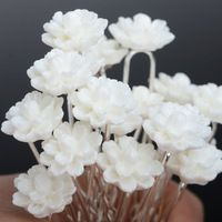 20PCS HairPins White Acrylic Flower Hair Clips U Pick Bridesmaid Wedding Jewelry Accessories Wholesale