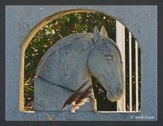 Décor Camarguais...  http://mistoulinetmistouline.eklablog.com https://www.facebook.com/pages/Mistoulin-et-Mistouline-en-Provence/384825751531072