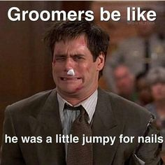 But we use humor to get us through 15 Things Your Groomer Does For Your Pet That You Don't Know Dog Grooming Styles, Dog Grooming Shop, Grooming Salon, Creative Grooming, Dog Salon, Dog Boarding, Dog Quotes, Happy Dogs, Dog Care