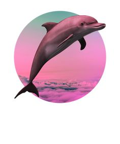 Dolphin Vaporwave Gift Aesthetic Seapunk Dolphin funny Gift Art Print by dc_designstudio Vaporwave, Dolphins Tattoo, Bottlenose Dolphin, Aesthetic Art, Funny Gifts, Cute Wallpapers, Art Prints, Apollo, Unique Art