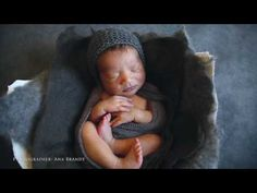 (1) A delightful family newborn session with Ana Brandt - YouTube