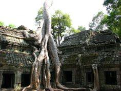 Siem Reap, Cambodia: Temples of Angkor
