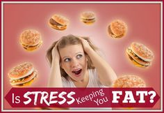 Is Stress Keeping You Fat?
