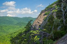 Meanderthals   Looking Glass Rock Trail, Pisgah National Forest