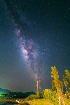 Tree of Life  Camera: Canon EOS 6D Lens: Rokinon 14mm Shutter Speed: 25sec Aperture: f/2.8 ISO/Film: 5000  Image credit: http://ift.tt/2ap8MlC Visit http://ift.tt/1qPHad3 and read how to see the #MilkyWay  #Galaxy #Stars #Nightscape #Astrophotography