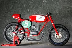 I'm in love with this little bike - RADICAL DUCATI 48 SPORT
