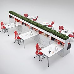 See 'green' dividing wall with dining on far side (ignore desks)