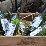 Vienna, Austria, Wine, Woman, Drinks, Bottle, Drinking, Beverages, Flask
