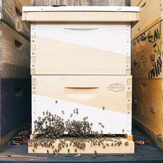 When art imitates life . // #hivemind #hothoneys #designer #beekeeper #modernhive #beehive