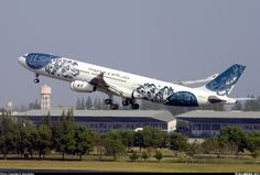 Airbus A340-312 aircraft picture
