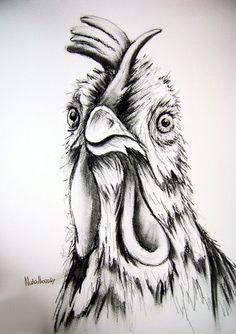 Large A3 CHICKEN Charcoal Original Art Drawing by Maria by Vivaci