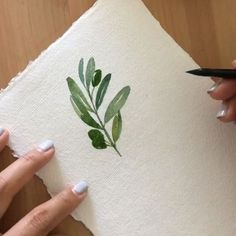 Taking a break from watercolor washes to do a quick sketch of an olive branch -- to remind me of the Tuscan hills lined with olive trees and grapevines. Tuscany was even more beautiful than I had imagined and I cannot wait to incorporate some Tuscan flair into my future projects! . #ytcwatercolors #ytcvideos